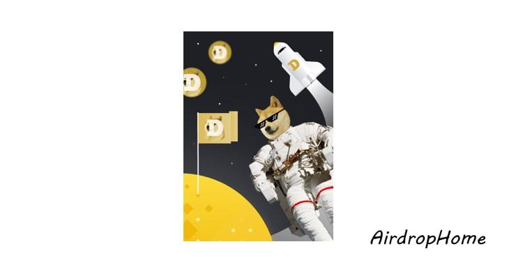binance-x-doge logo